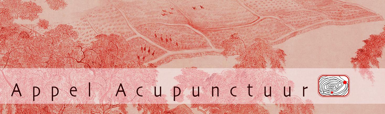 Appel Acupunctuur